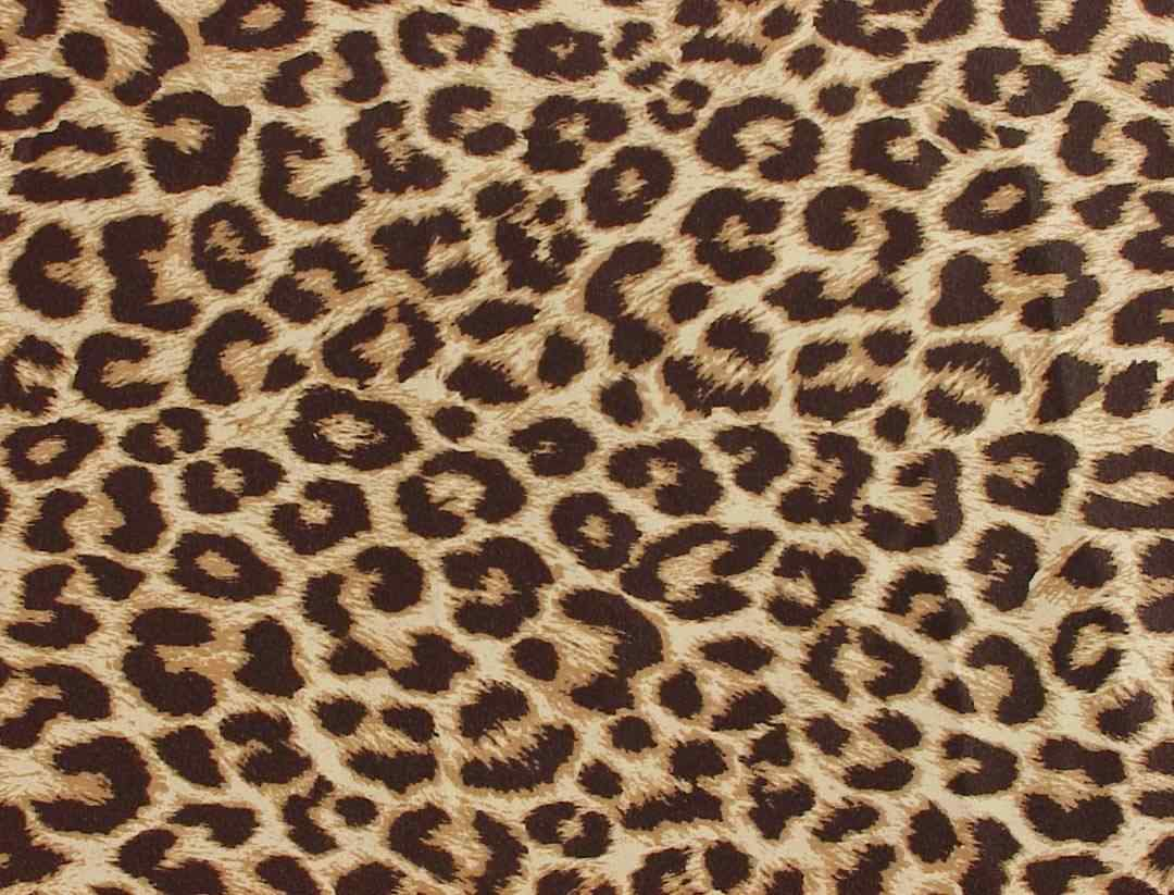 Leopard Fabric Wholesale