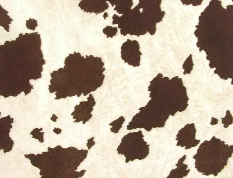 Southwestern Fabric Black Cow Print